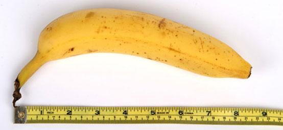 banana-penis-size